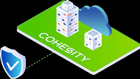 Cohesity cloud