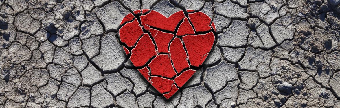 cohesity-blog-hero-breakupvideo