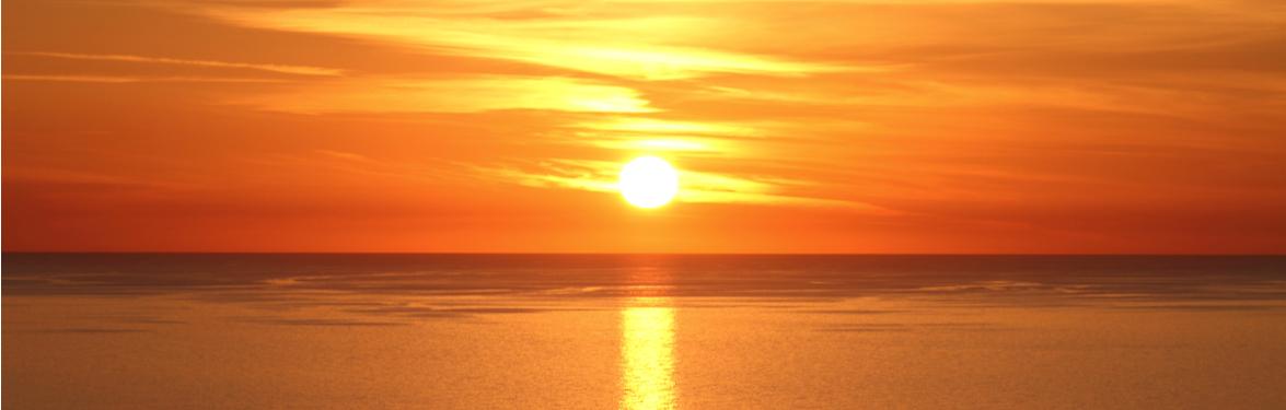 cohesity-blog-home-sunsetdaytoremember