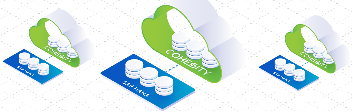 Cohesity Expands Certified Data Protection For Sap Hana Banner