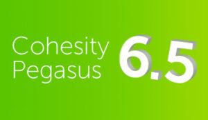 cohesity pegasus 6.5 release