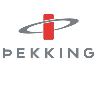 thekking-Hero