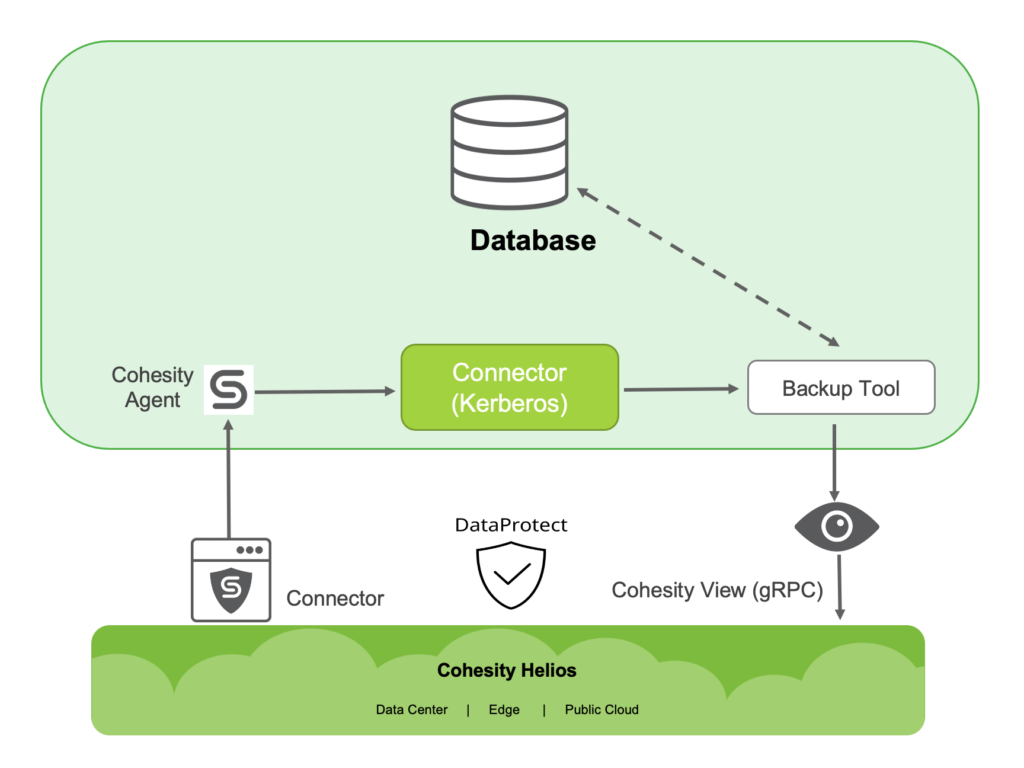 figure-2-cohesity-agent-and-connector-workflow-new
