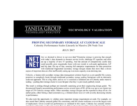 Taneja Group Scalability Report July 2017