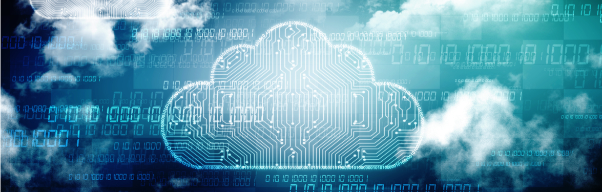 Cohesity and VMware vCloud Director: Simplicity Meets Multi-Tenant Protection