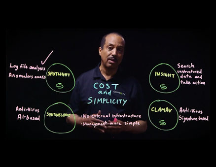 The Cohesity Smart Files Environment