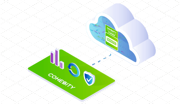 Introducing Pay-per-Use: Consumption-based Subscription for Cohesity Service Provider Partners