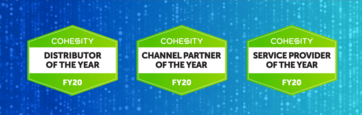 Channel Partner of the Year banner